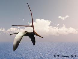 Nyctosaurus nt